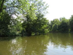 Bootsfahrt auf der Elster